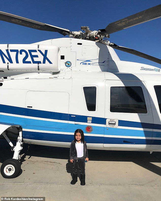 Learning more: A shots of the three-year-old showed the tail number of the Sikorsky S-76