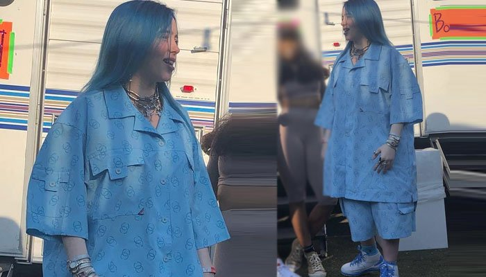 Billie Eilish pokes fun at her old style after a fan calls her new look Boring